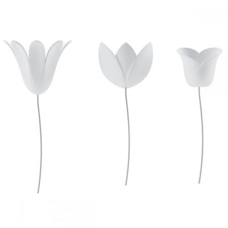 Tulipanes blancos Umbra Wall decor